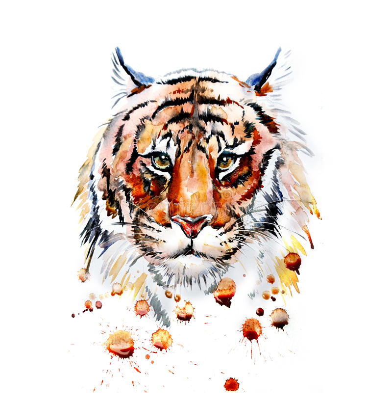 What's The Personality of Zodiac Tiger?