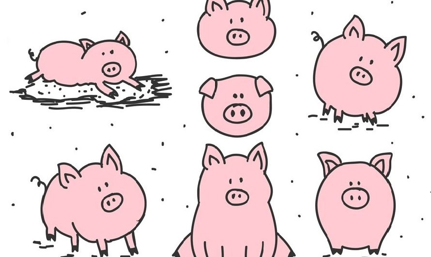 The Chinese Zodiac Pig: An Angel Sign