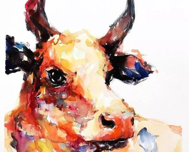 What's The Characteristics of The Zodiac Ox