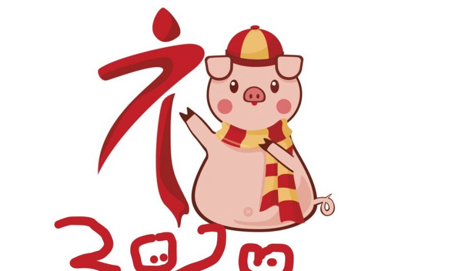 2020: How about the fortune of Chinese Zodaic Pig?