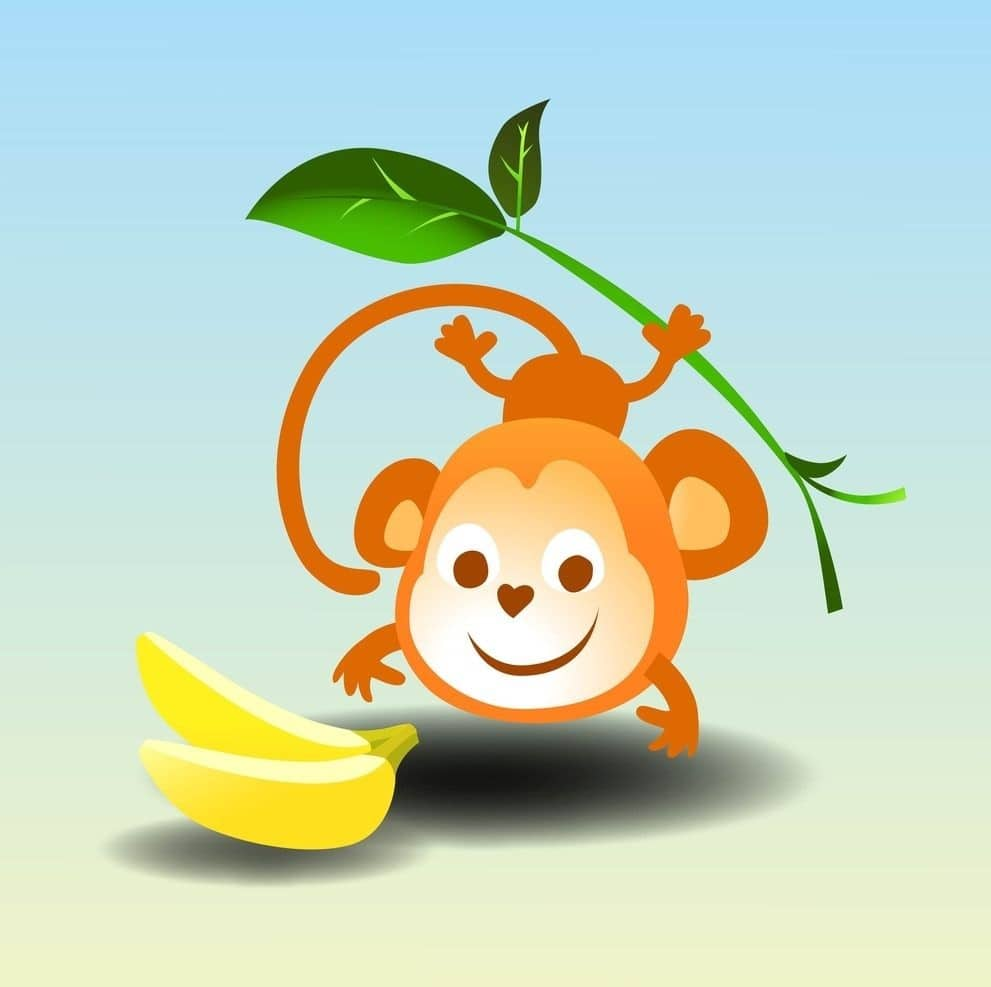 A monkey is going to take the banana