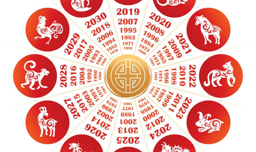 Chinese Zodiac: Personality Comparison of Their Advantages and Weakness
