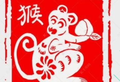 a monkey in red background