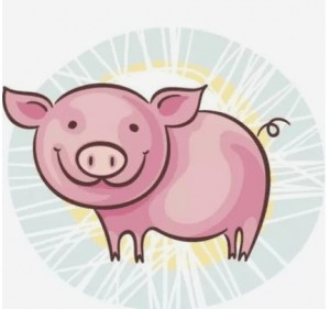 2031 is the year of the pig